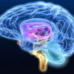 Резервуары ликвора (мозговой жидкости)