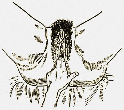 Фото раздвигания пальцами одной руки губ вульвы
