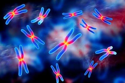 Генетические аспекты гемофилии