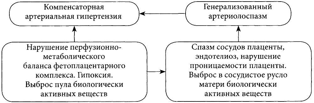 Механизмы развития тяжелых форм гестоза