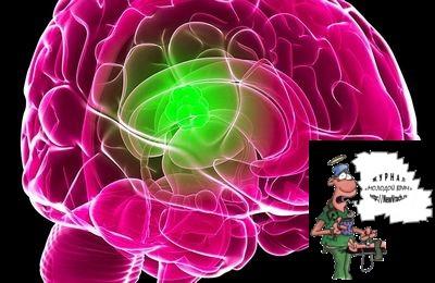 Теории возникновения множественных менингиом головного мозга