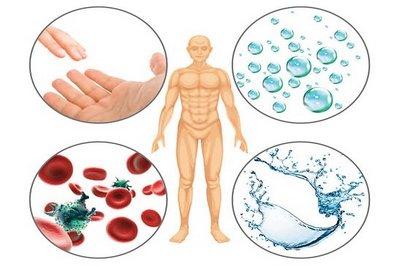 Пути передачи инфекции (артифициальный, трансмиссивный, парентеральный, воздушно-капельный, контактный, фекально-оральный)