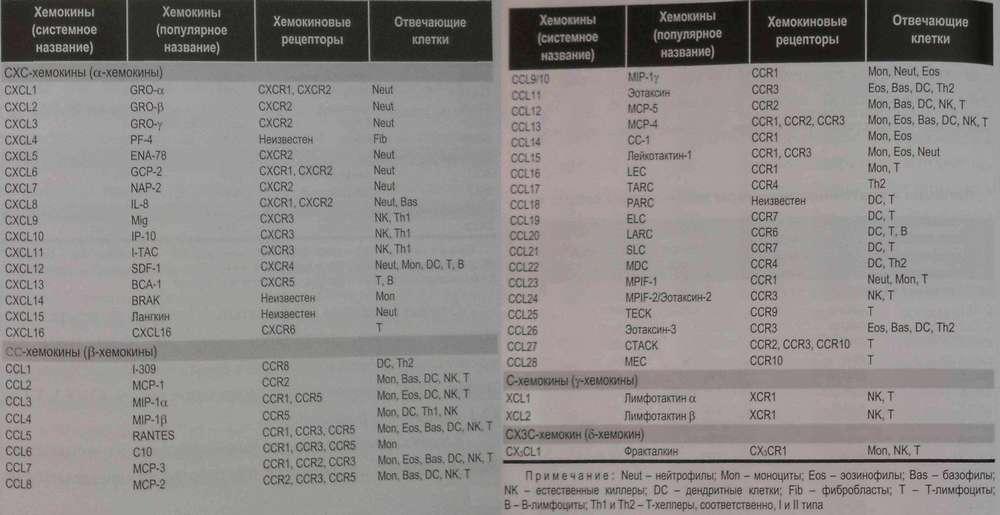 Лиганды и клеточные рецепторы хемокинового семейства