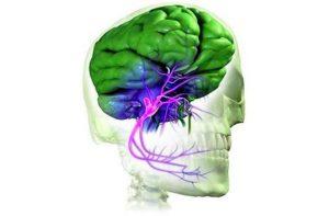 Причиныневралгии тройничного нерва