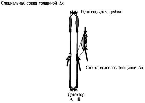 Мера ослабления определяет ту часть излучения, которая проходит через данную среду толщиной x