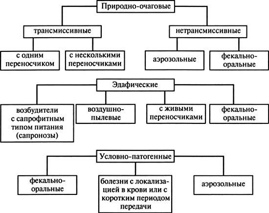 Классификация инфекций